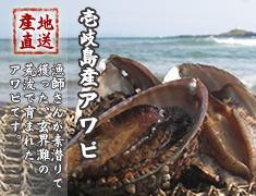 壱岐島産あわび 玄界灘の荒波で育ったあわびを産地直送でお届けします
