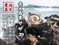 壱岐島産サザエ 玄界灘の荒波で育ったサザエを産地直送でお届けします