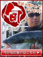 旬 壱岐で獲れたてピチピチ!今が旬の魚介はこちら